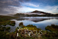 PROFOCUS-482.jpg