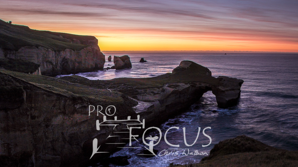 PROFOCUS-71.jpg