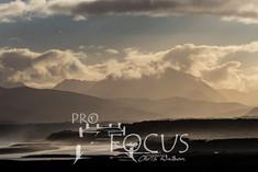 PROFOCUS-314.jpg