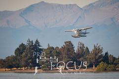 PROFOCUS-500.jpg