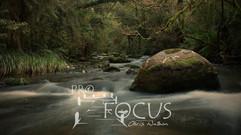 PROFOCUS-15.jpg