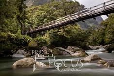 PROFOCUS-491.jpg