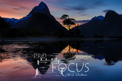 PROFOCUS-336.jpg