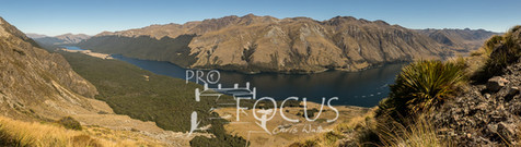 PROFOCUS-411.jpg