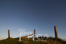 PROFOCUS-375.jpg