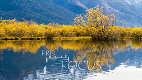 PROFOCUS-288.jpg