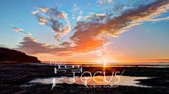 PROFOCUS-42.jpg