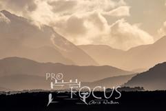 PROFOCUS-311.jpg