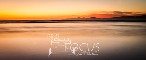 PROFOCUS-13.jpg