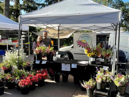 Floral Arrangements Part 4: Reader Replies - a Mixed Bouquet