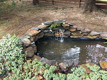Pond clean out (2).JPG