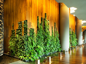 Rethinking Luxury Hotel Design to Connect Guests With Nature