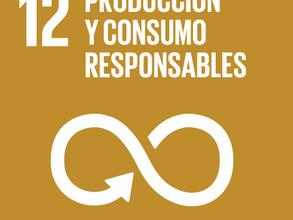 Objetivo 12 del Desarrollo Sostenible Garantizar modalidades de consumo y producción sostenibles