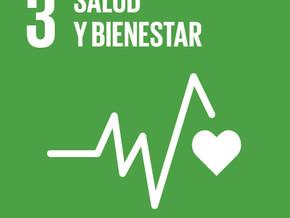 Objetivo 3 del Desarrollo Sostenible Garantizar una vida sana y promover el bienestar para todos en