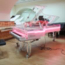 Прозрачный концертный рояль (фото)