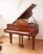 Светло-коричневый мини рояль S. Ritter photo