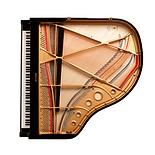 Рама рояля (вид сверху), фото
