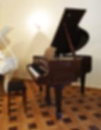 Коричневый рояль красного дерева S. Ritter фото