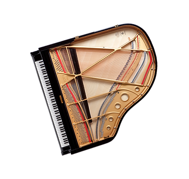 Мини рояль — длина равна ширине (фото сверху)