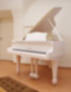 Белый мини рояль S_Ritter Риттер фото сп