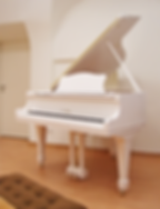 Белый мини рояль S. Ritter (фото)
