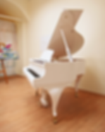 Белый мини рояль Ritter чиппендейл (photo)