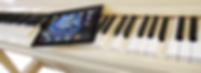 Самоиграющий рояль Аугуст Фёрстер с самодвижущимися клавишами (фото)