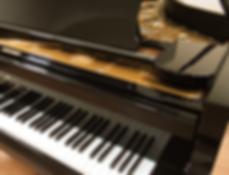 Клавиатура концертного рояля C. Bechstein в чёрной отделке (фото)