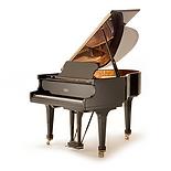 Вид рояля (фото)