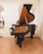 Коричневый мини рояль Риттер Лувр (фото)