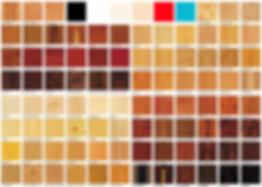 Цвет рояля: варианты внешней отделки, породы дерева (фото)