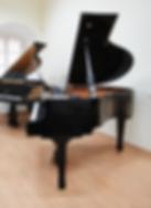 Черный мини рояль S. Ritter photo