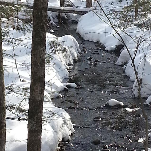 ruisseau hiver