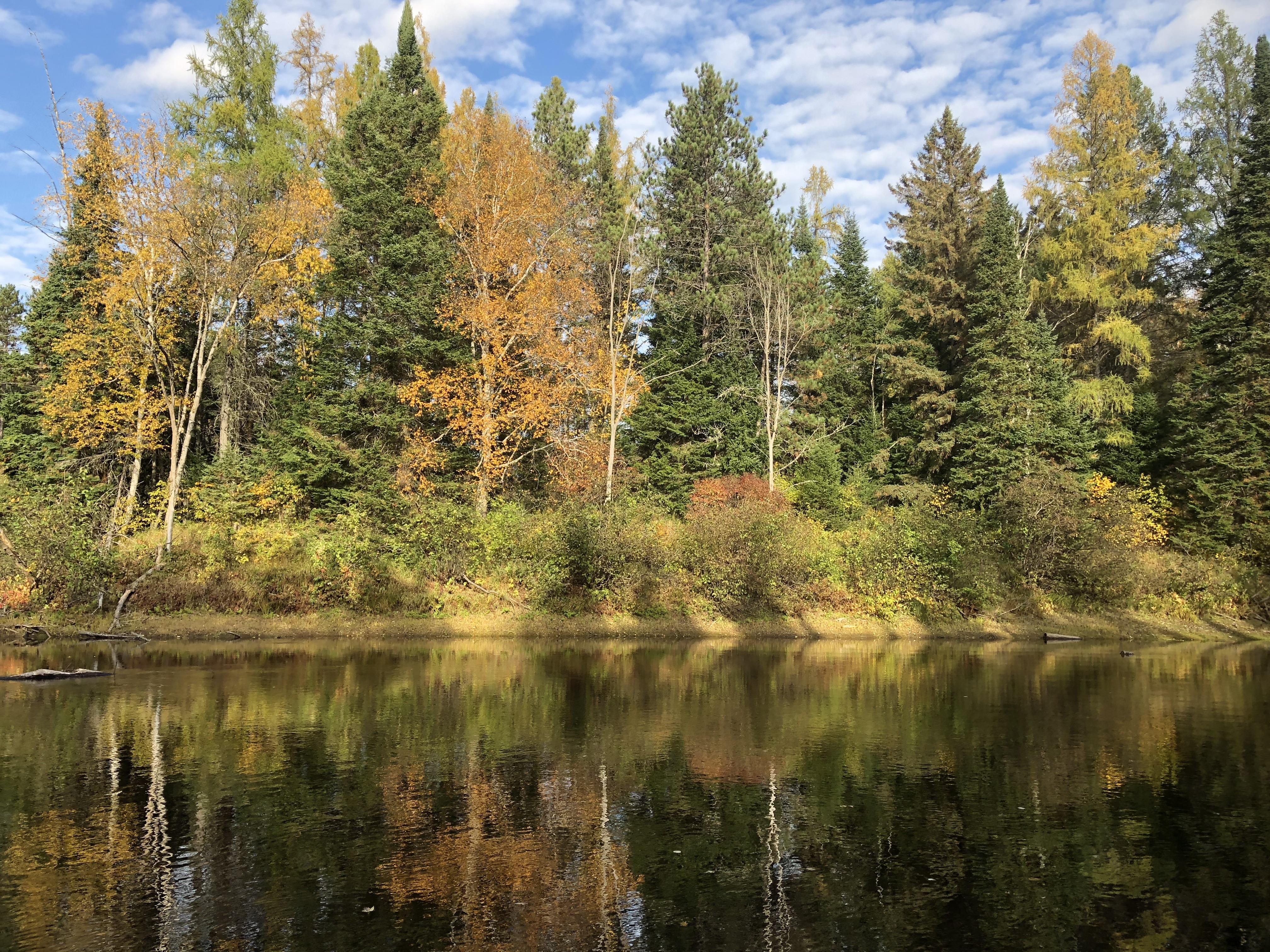 vue du quai en automne
