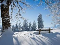 activité_hiver