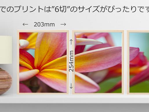 3分割ネイチャー写真:高画質ダウンロードファイル
