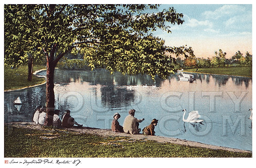 Scene in Maplewood Park, Rochester, N.Y.