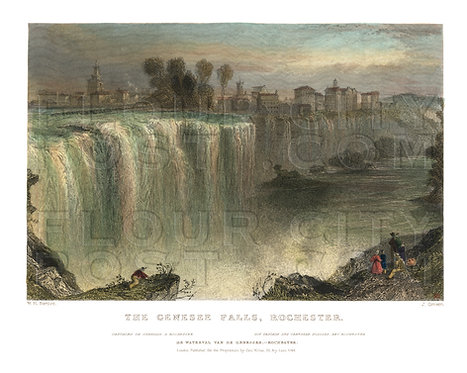 The Genesee Falls, Rochester, N.Y. (COLORIZED)
