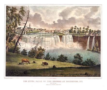 The Upper Falls of the Genesee at Rochester, N.Y. (COLORIZED)