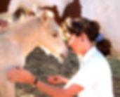 Mariposa-2006-Filly04_edited.jpg