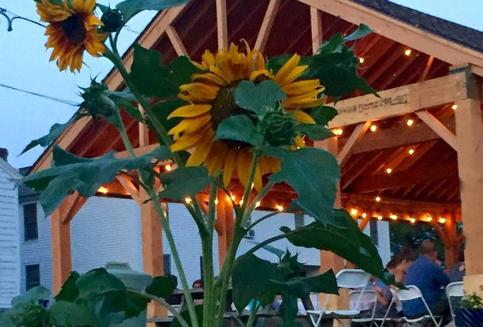 Farm to Table Dinner sunflower b.jpg