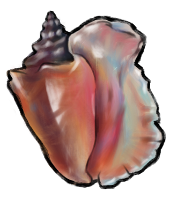 Conch.png