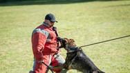 dog_trainging_cutting_edge_k9_2123.jpg
