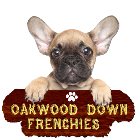 oakwood-down-logo2.png
