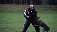 dog_trainging_cutting_edge_k9_15.jpg