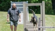 dog_trainging_cutting_edge_k9_245.jpg
