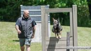dog_trainging_cutting_edge_k9_289.jpg