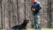 dog_trainging_cutting_edge_k9_28.jpg