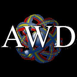 Affordable Website Designers Logo-min.pn