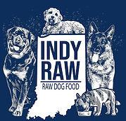Indy_raw_logo